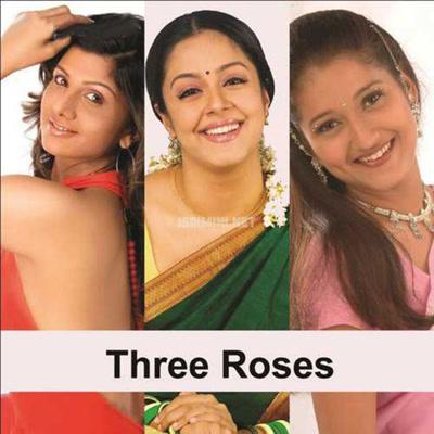 Three Roses Album Poster