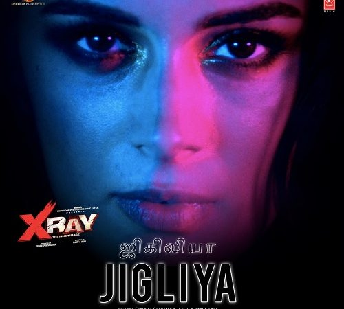 X-Ray The Inner Image (2019) [Original Mp3] Raaj Aashoo