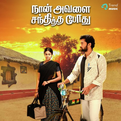 Naan Avalai Santhitha Pothu Album Poster